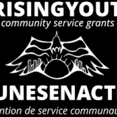 Youth!  Apply for Grants to fund your community project idea!