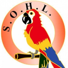 SOHL (Sask. Organization of Heritage Languages) Annual Meeting - in Regina - June 17th