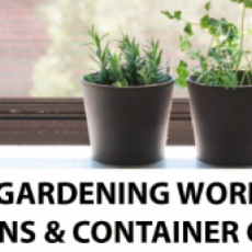 Free Indoor Gardening Workshops