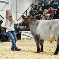 Canadian Western Agribition in Regina - November 20 - 25, 2017 at Evraz Place