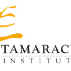 Free Webinars about Community Development - sponsored by Tamarack Institute