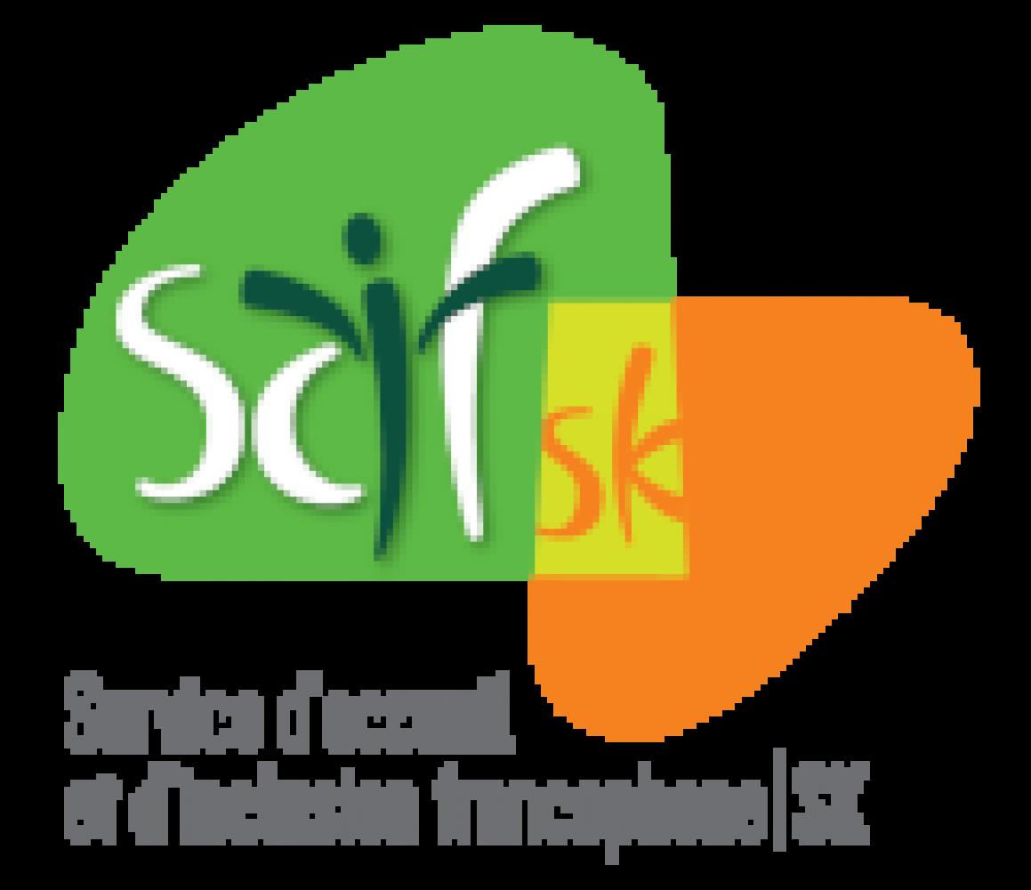 New Francophone Virtual Volunteering Platform