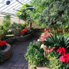Regina Floral Conservatory - A Beautiful Escape!
